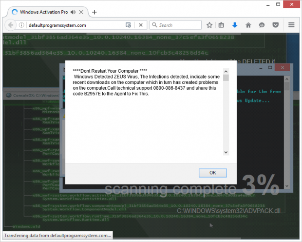 Fake Zeus virus alert screenshot