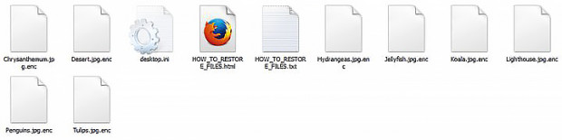 Files with the .enc extension plus ransom notes inside a folder