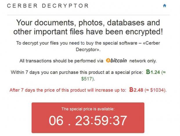 Information displayed on the Cerber Decryptor page