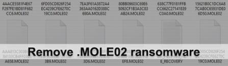 Remove MOLE02 ransomware virus and decrypt .mole02 files (upd. June 15)