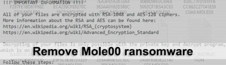 Mole00 ransomware: how to decrypt virus .MOLE00 files