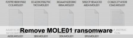 MOLE01 ransomware virus – how to decrypt .MOLE01 files
