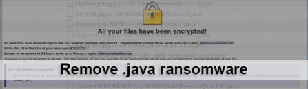 Remove Java ransomware and decrypt .java virus files