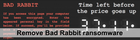 Bad Rabbit ransomware removal and data recovery