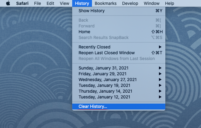 Safari: Clear History